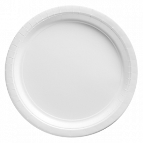 Frosty White Paper Dinner Plates 20ct