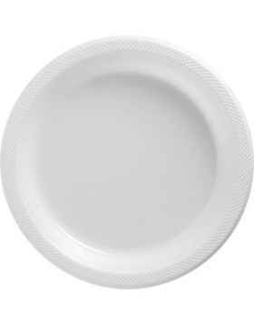 Frosty White Plastic Dinner Plates 20ct